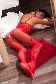 Love The Red Lingerie Very Horny-09