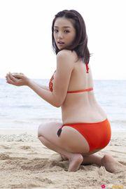 Ai Shinozaki In Sexy Bikini-10