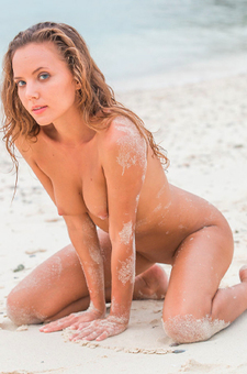 Clover On The Beach