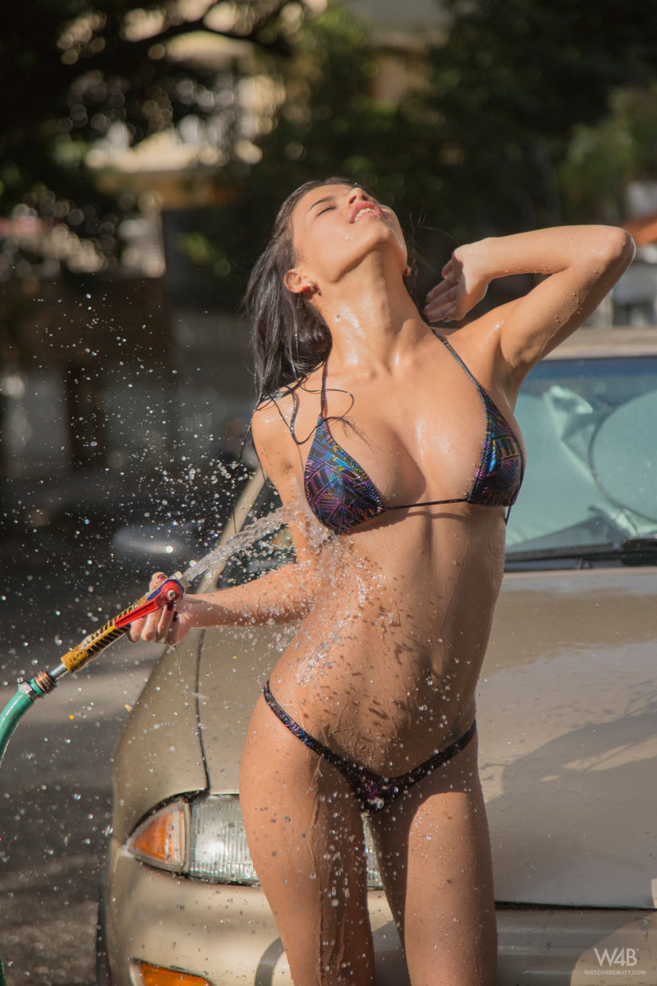 Denisse Gomez Car Wash 13